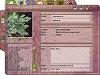 Zinātniskā informācija par augu